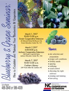 Cover photo for Managing Your Blueberry & Grapevines Seminar