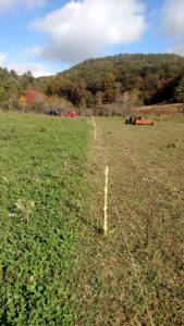 Cover photo for Stockpiling Pasture for Winter Grazing With Electric Fencing