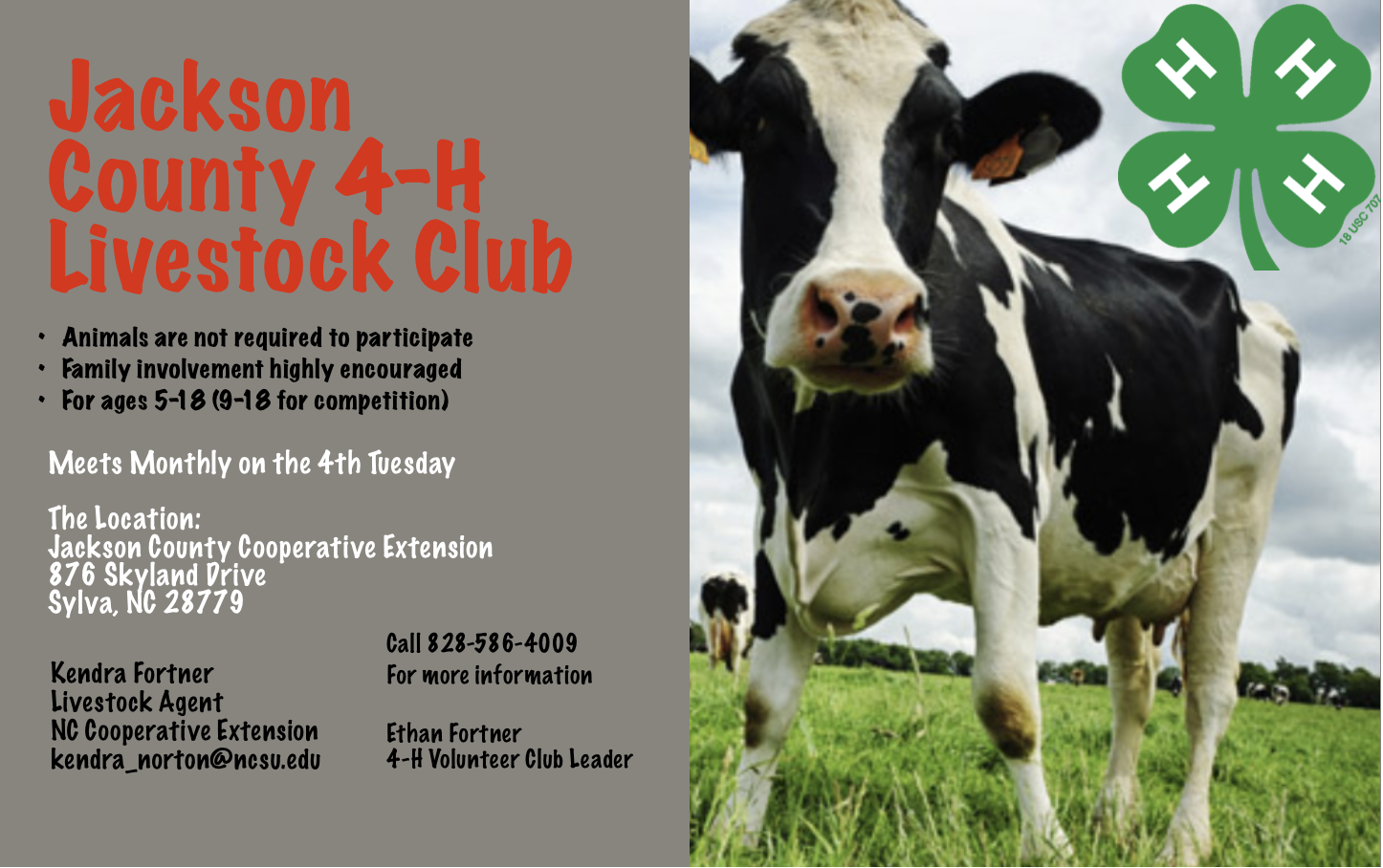 4-H Livestock Club flyer image