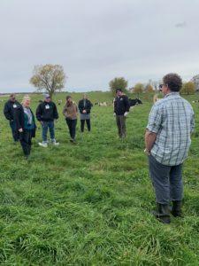 group on Dairy Farm