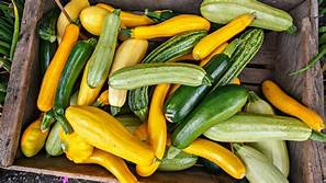 Cover photo for Food Preservation - Squash