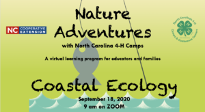 Cover photo for Coastal Ecology-Nature Adventures With NC 4-H Camps