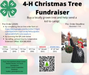Cover photo for 4-H Christmas Tree Fundraiser
