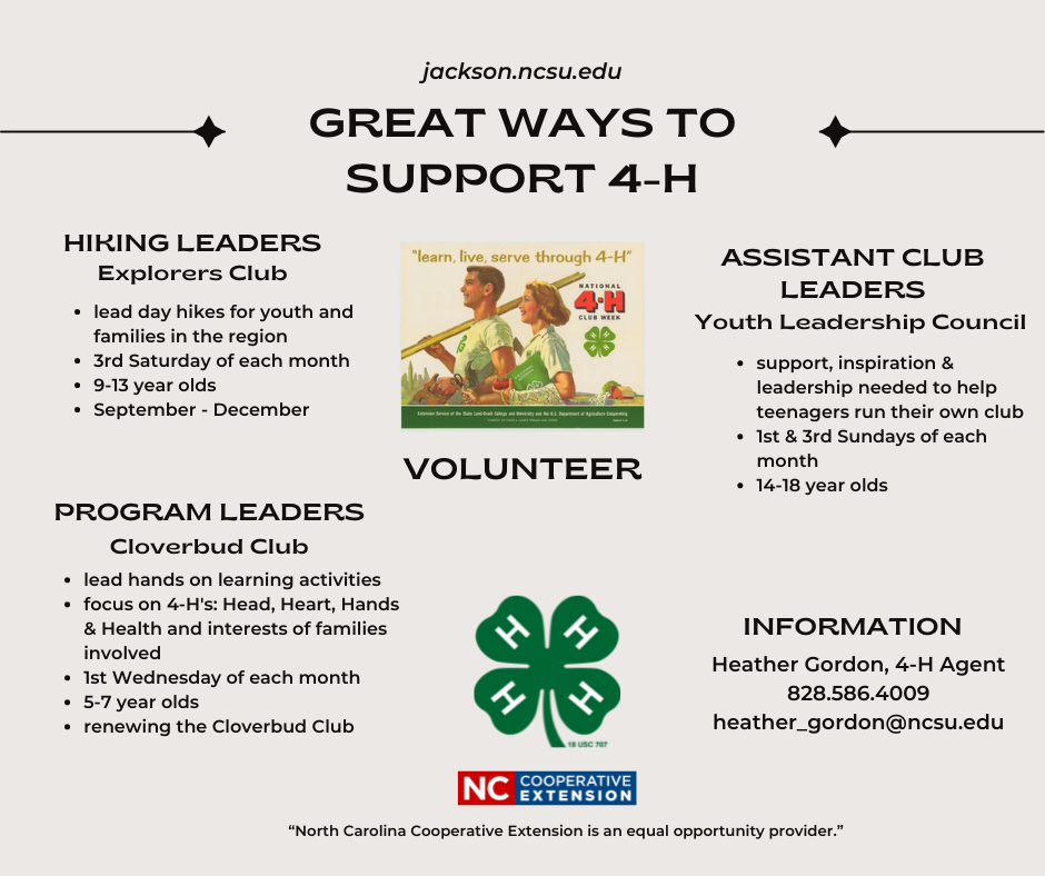 Great Ways to Support 4-H flyer
